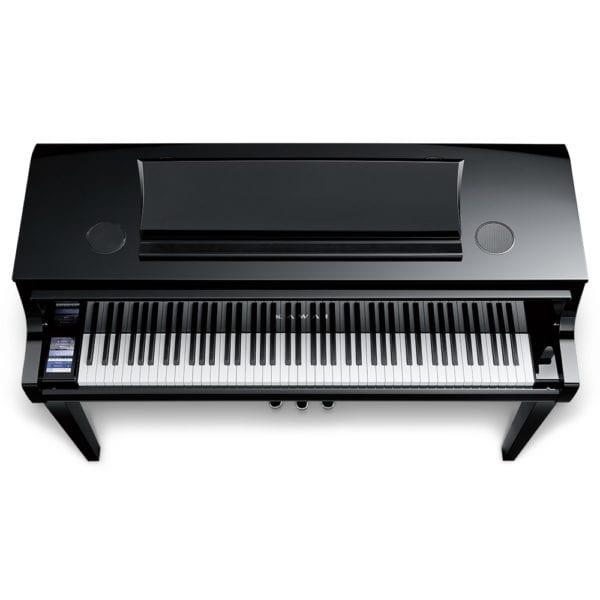 NV10finD-600x600